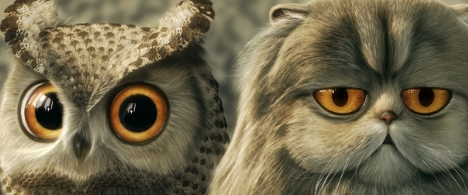 Lomo Owl